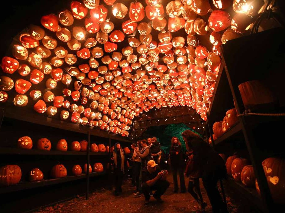 Thousands Sign a National Petition to Move Halloween to a Saturday jack-o-lantern-displays-3