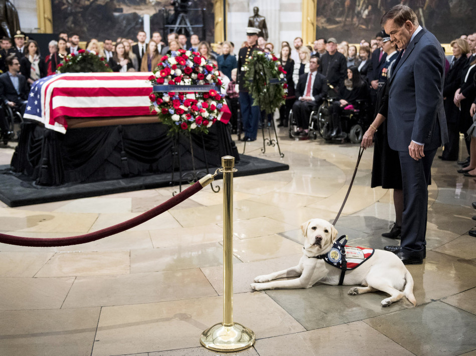 Jenna Bush Hager's Daughters Say Goodbye to George H. W. Bush's Service Dog, Sully, Before His Next Assignment sully-4