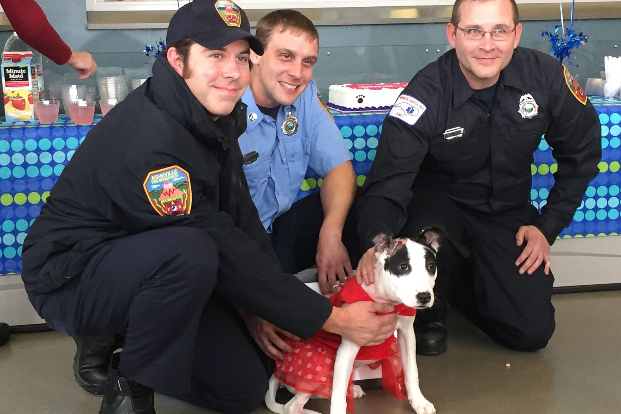 Watch This Adorable Puppy Reunite With the Firefighters Who Rescued Her