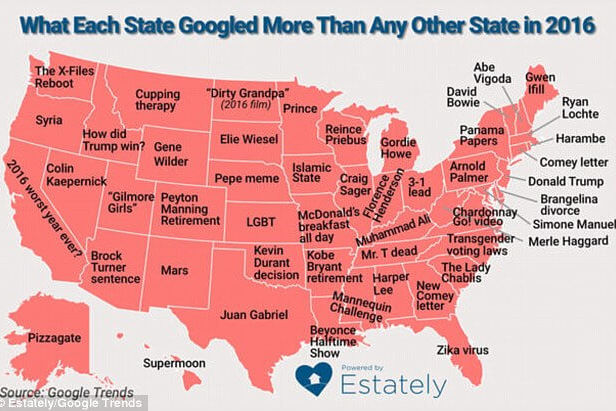 You'll Never Believe What Your State Googled in 2016