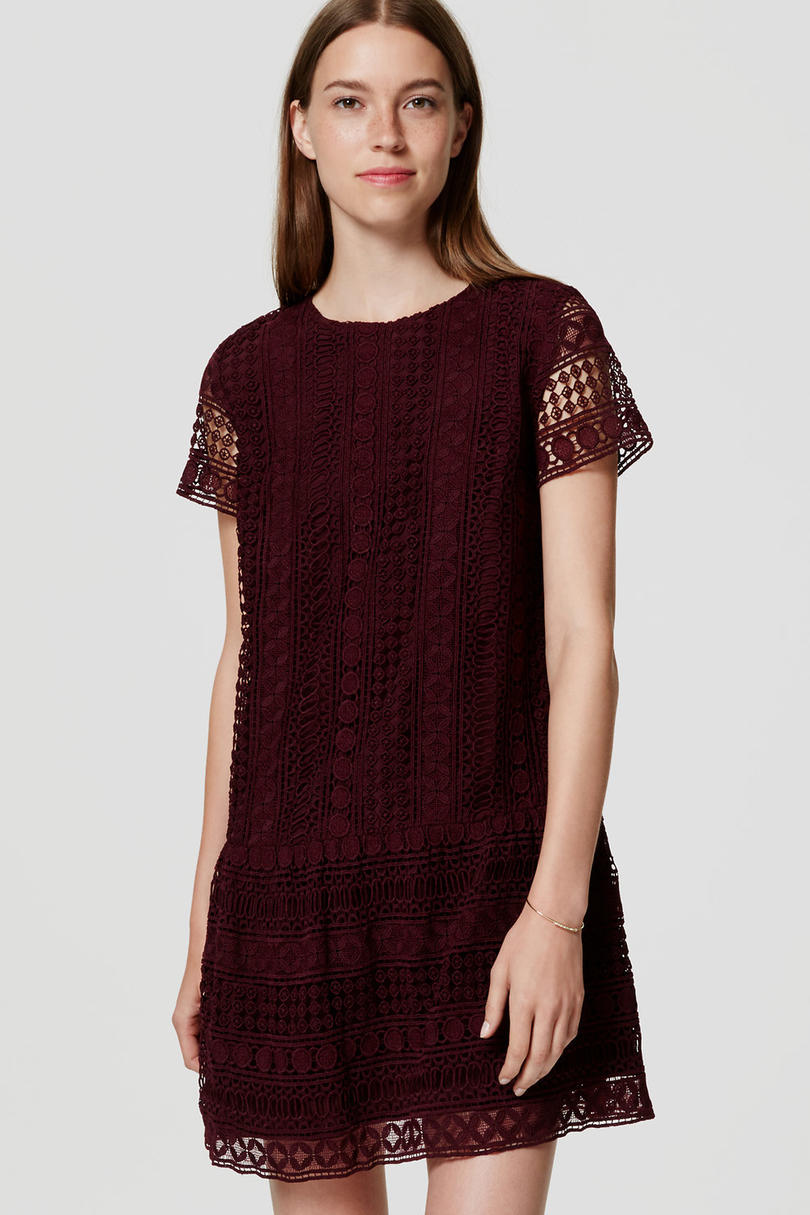 Lace Drop Waist Dress from Loft